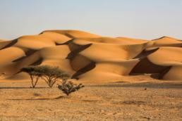 Desert of Dubai - UAE